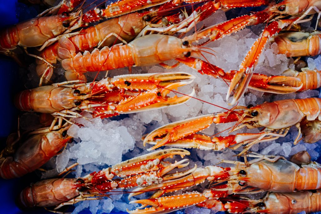 Langoustine Seafood Go